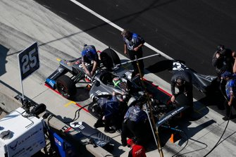 Conor Daly, Andretti Autosport Honda