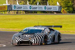 #6 Lamborghini Huracan GT3: Adrian Deitz, Cameron McConville