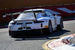 #911 Walkinshaw GT3 Porsche 911 GT3-R: John Martin, Neale Muston
