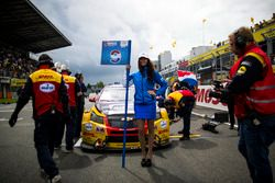 Grid girl of Tom Coronel, Roal Motorsport, Chevrolet RML Cruze TC1