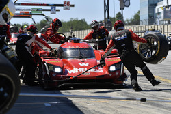#31 Action Express Racing Cadillac DPi, P: Eric Curran, Felipe Nasr pit stop.