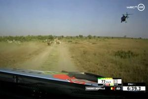 Thierry Neuville, Martijn Wydaeghe, Hyundai Motorsport Hyundai i20 Coupe WRC cross some zebra