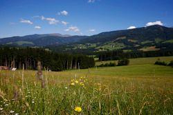 Campi e montagne in Austria