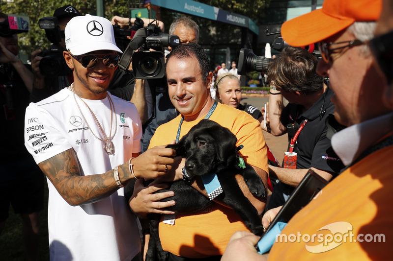 Lewis Hamilton, Mercedes AMG