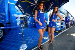 De charmantes gridgirls Suzuki