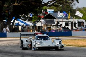 #01 Cadillac Chip Ganassi Racing Cadillac DPi, DPi: Scott Dixon, Renger van der Zande, Kevin Magnussen