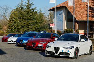 Vetture Alfa Romeo