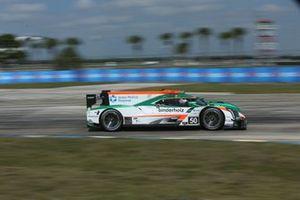 #50 Juncos Racing Cadillac DPi: Will Owen, Rene Binder, Agustin Canapino
