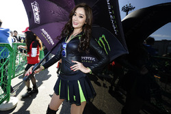 Hot Monster energy girl