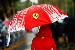 Ferrari umbrella