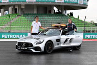 Bernd Maylander, FIA Safety Car Driver