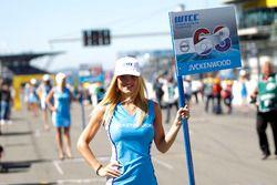 Chica de la parrilla de Nicky Catsburg, Polestar Cyan Racing, Volvo S60 Polestar TC1