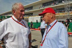 Хельмут Марко, гоночный консультант Red Bull и Ники Лауда, неисполнительный председатель Mercedes