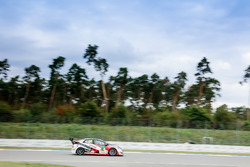 Dominik Fugel, Team Honda ADAC Sachsen, Honda Civic TCR