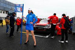 Chica de la parrilla para Yvan Muller, Citroën World Touring Car Team, Citroën C-Elysée WTCC