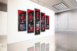 Collezione Schumacher Ferrari edizione limitata