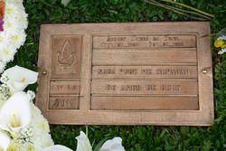 ذكرى إيرتون سينا