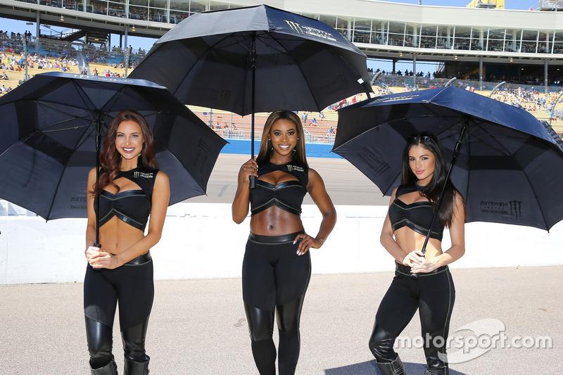 Девушки на гонке Кубка NASCAR