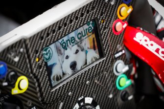 Un chien sur l'écran du volant de Graham Rahal, Rahal Letterman Lanigan Racing Honda