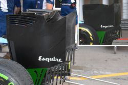 Williams rear wing endplate comparison