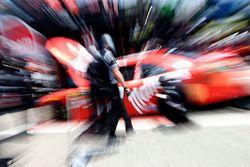 Kyle Busch, Joe Gibbs Racing, Toyota Camry Maltesers