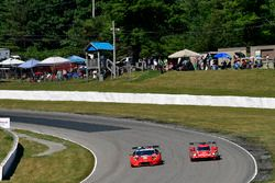 #48 Paul Miller Racing Lamborghini Huracan GT3, GTD: Madison Snow, Bryan Sellers #31 Action Express Racing Cadillac DPi, P: Eric Curran, Felipe Nasr