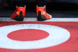 De schoenen van Max Verstappen, Red Bull Racing