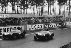 Paul Frere, Desmond Titterington, Jaguar D-type, davanti a Jack Fairman, Ken Wharton, Jaguar D-type