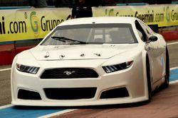 Thomas Ferrando, Knauf Racing, Ford