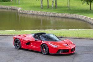 Ferrari Enzo del 2003 di Wolff in vendita