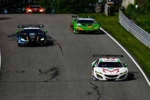 #44 Magnus with Archangel Acura NSX GT3, GTD: John Potter, Andy Lally