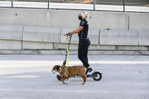 Angela Cullen, Physio for Lewis Hamilton on a scooter with the dog of Lewis Hamilton, Mercedes-AMG F1