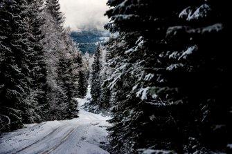 Schnee auf den Schotterpisten der Rallye Schweden
