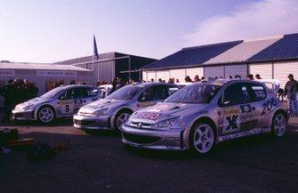 Line up Peugeot 206 al Rally Monte Carlo del 2000