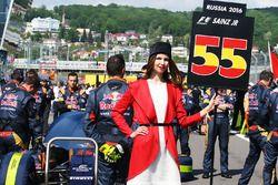Chica de la parrilla para Carlos Sainz Jr., Scuderia Toro Rosso STR11