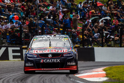 Shane van Gisberge, Alexander Premat, Triple Eight Race Engineering Holden