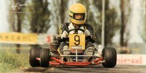 Senna kart