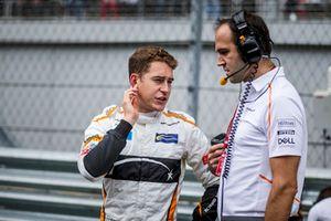 Stoffel Vandoorne, McLaren sur la grille