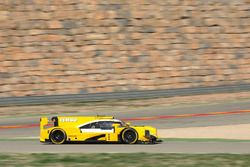 Racing Team Nederland, Dallara LMP2
