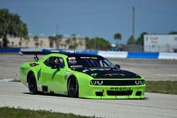#11 TA2 Dodge Challenger, Peter Klutt of Stevens Miller Racing