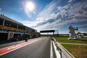 Una grande scultura di un orso sul lato della pista