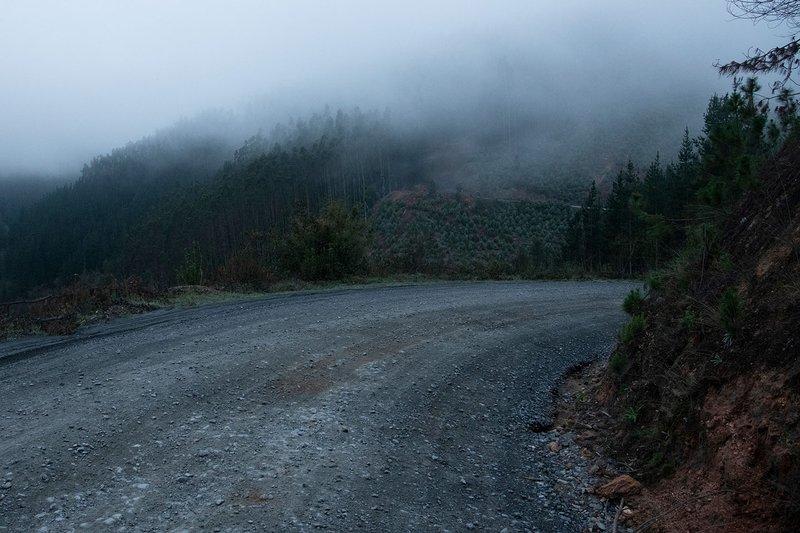 Vista general del camino