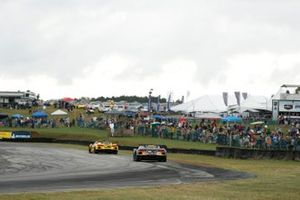#3: Corvette Racing Corvette C8.R, GTLM: Antonio Garcia, Jordan Taylor,#4: Corvette Racing Corvette C8.R, GTLM: Tommy Milner, Nick Tandy