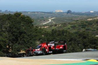 #31 Whelen Engineering Racing Cadillac DPi, DPi: Felipe Nasr, Pipo Derani