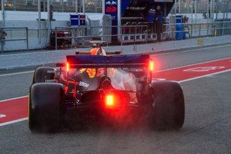 Max Verstappen Red Bull Racing RB15