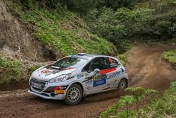 Mattia Vita, Pietro Elia Ometto, Peugeot 208 R2