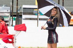 Grid Girls Stock Car - Londrina