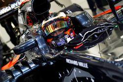 Stoffel Vandoorne, McLaren MP4-31