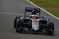 Stoffel Vandoorne, McLaren MP4-31 testrijder