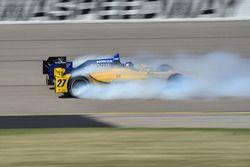 Dreher: Marco Andretti, Andretti Autosport, Honda